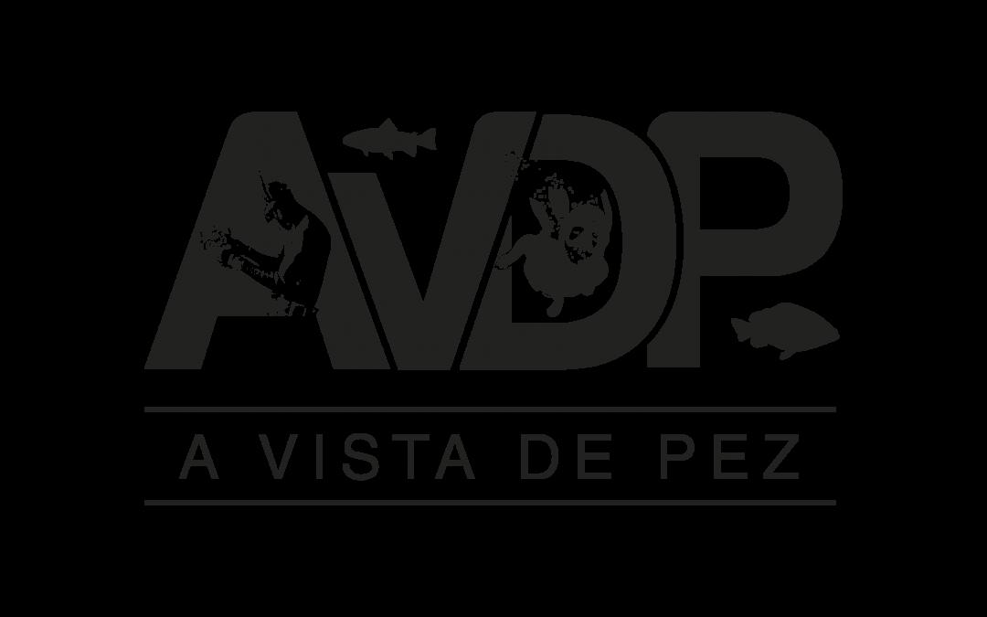 A VISTA DE PEZ – ¡YA ESTAMOS EN MARCHA!